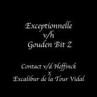 EXCEPTIONNELLE 01.jpg